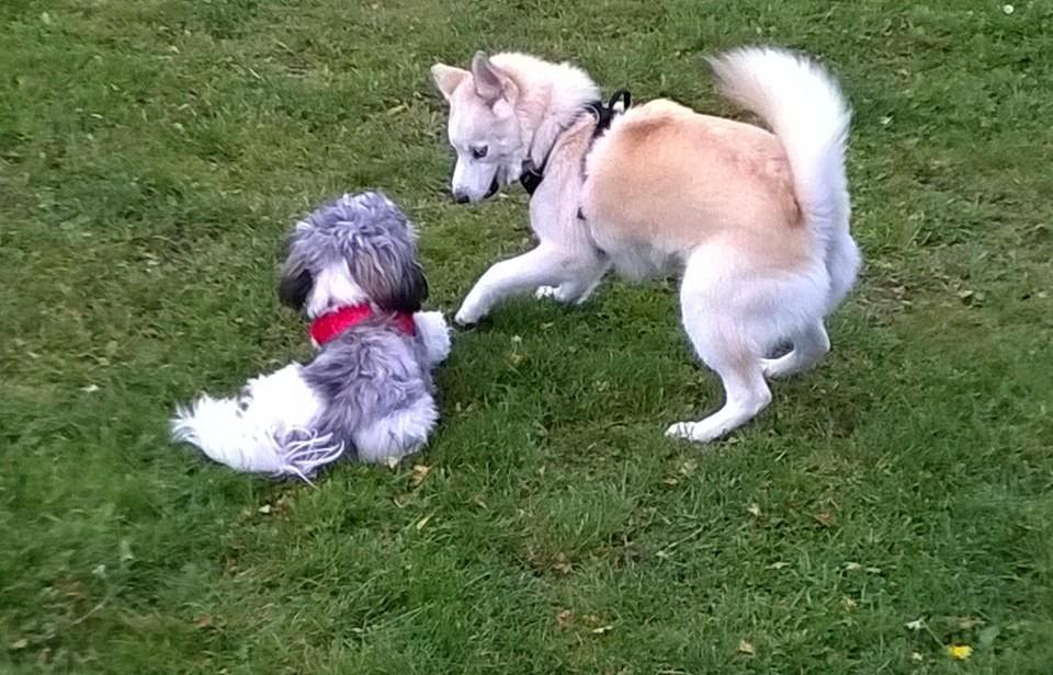 Lucy & her friend Lea